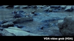 "Scena iz filma ""Tamne vode"", ilustrativna fotografija"