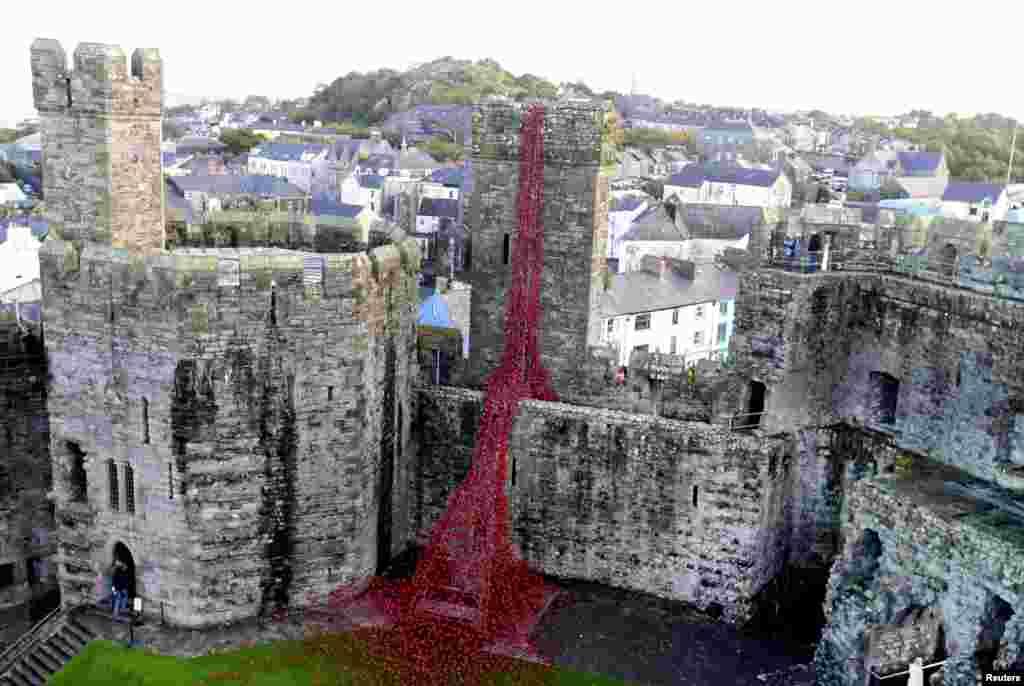 Escultura dos artistas Paul Cummins e Tom Piper exposta no Caernarfon Castle, no País de Gales.