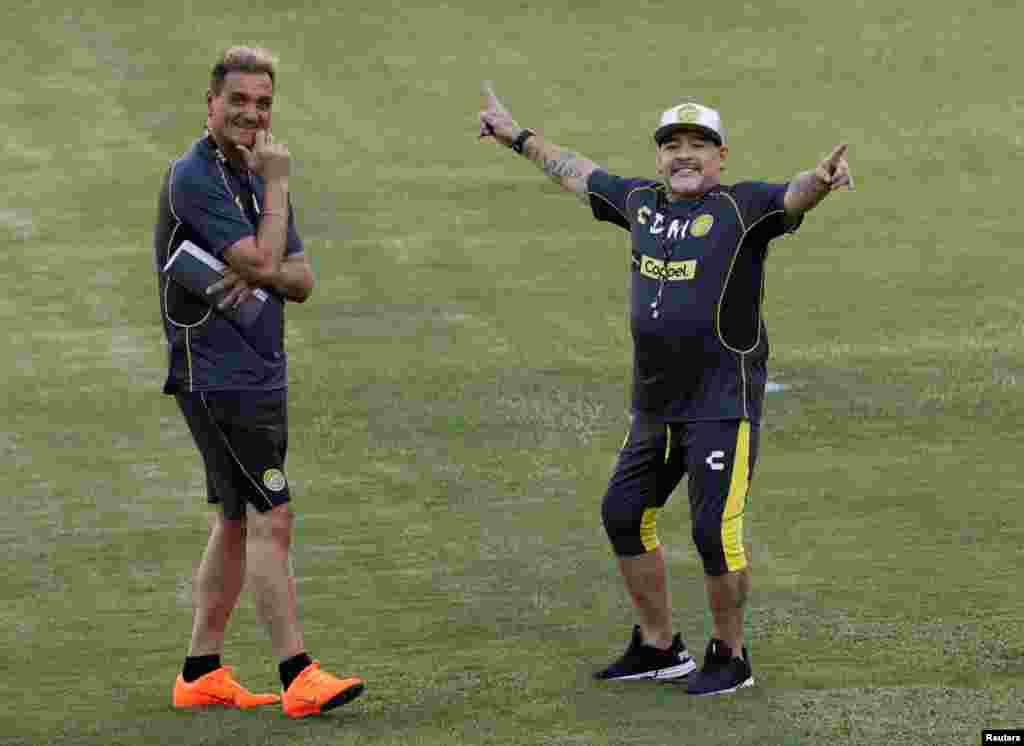 حضور دیگو مارادونا، اسطوره فوتبال آرژانتین در اولین روز از جلسه تمرین تیم دسته دومی دورادوس در مکزیک پس ار انتخاب او به عنوان سرمربی آن تیم
