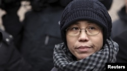 Liu Xia, the wife of Chinese dissident Liu Xiaobo, talks to the media in Beijing February 11, 2010.