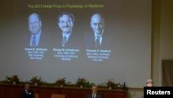 Juleen Zierath (kanan), pimpinan komite penghargaan Nobel bidang Kedokteran atau Psikologi mengumumkan nama-nama para pemenang Nobel Kedokteran tahun 2013 di Institut Karolinska, Stockholm (7/10).