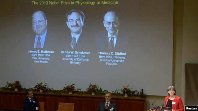 Объявляются лауреаты Нобелевской премии в области медицины. Стокгольм, Швеция. 7 октября 2013 г.