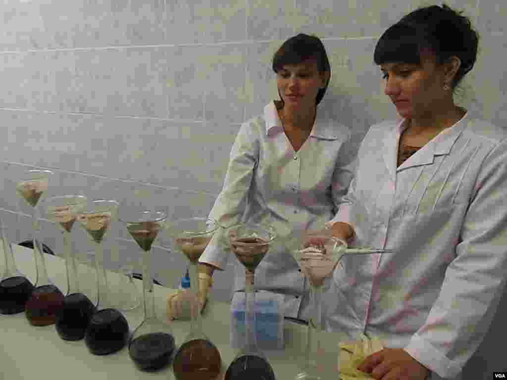 大学研究人员在化验俄罗斯北部和西伯利亚的土壤。最右侧的是接近北冰洋,盛产天然气的涅涅茨地区土壤。西伯利亚土壤颜色较深。(美国之音白桦拍摄)