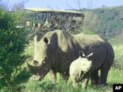 Tourists view rhinos on South Africa's Pumba Game Reserve … The country's rhino owners are taking extraordinary measures to protect their animals from poachers.
