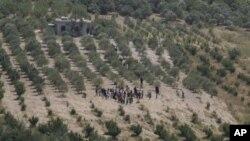 大批敘利亞人逃亡往土耳其。