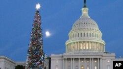 美國國會山前的聖誕樹