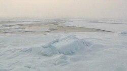 Arktik, ekolozi i naftni giganti