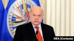 Insulza dijo que tampoco entiende por qué no se dejó hablar a la diputada ante el Consejo Permanente de la OEA.