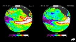 미 항공우주국 NASA가 위성사진 분석을 바탕으로 태평양 해수면 온도를 표시한 지도를 공개했다. 왼쪽은 지난 27일 지구의 해수면 온도를 나타내었고, 오른쪽은 지난 1997년 엘니뇨 현상 당시 온도를 보여주는데 흡사한 모양을 띄고 있다.