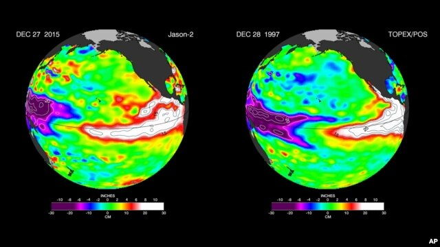 These false-color images provided by NASA satellites compare warm Pacific Ocean water temperatures from the strong El Nino that brought North America large amounts of rainfall in 1997 (R) and the current El Nino as of Dec. 27, 2015 (L). NASA's Jet Propulsion Laboratory says the strong El Nino in the Pacific Ocean shows no sign of weakening. (NASA via AP)