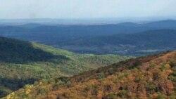 Осенние краски Вирджинии