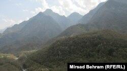 Šumska prostranstva u Bosni i Hercegovini