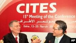 Masanori Miyahara (kanan), delegasi Jepang, berjabatan tangan dengan Patrick van Klaveren, ketua delegasi Monako, dalam pertemuan CITES.