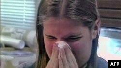 Son araşdırmalar alaq otlarının allergiyaya səbəb olduğunu göstərib