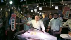 Jaoneses pescam atum em águas angolanas - 1:26