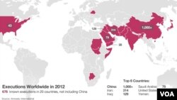 Map of executions across the world in 2012, according to Amnesty International.