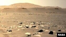 """美國太空總署""""毅力號""""火星車拍攝到的""""機智號""""第三次飛行。(2021年4月25日)"""