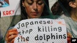 지난 2011년 이탈리아 밀란에서 환경단체 회원들이 일본의 고래잡이에 반대하는 시위를 벌이고 있다. (자료사진)