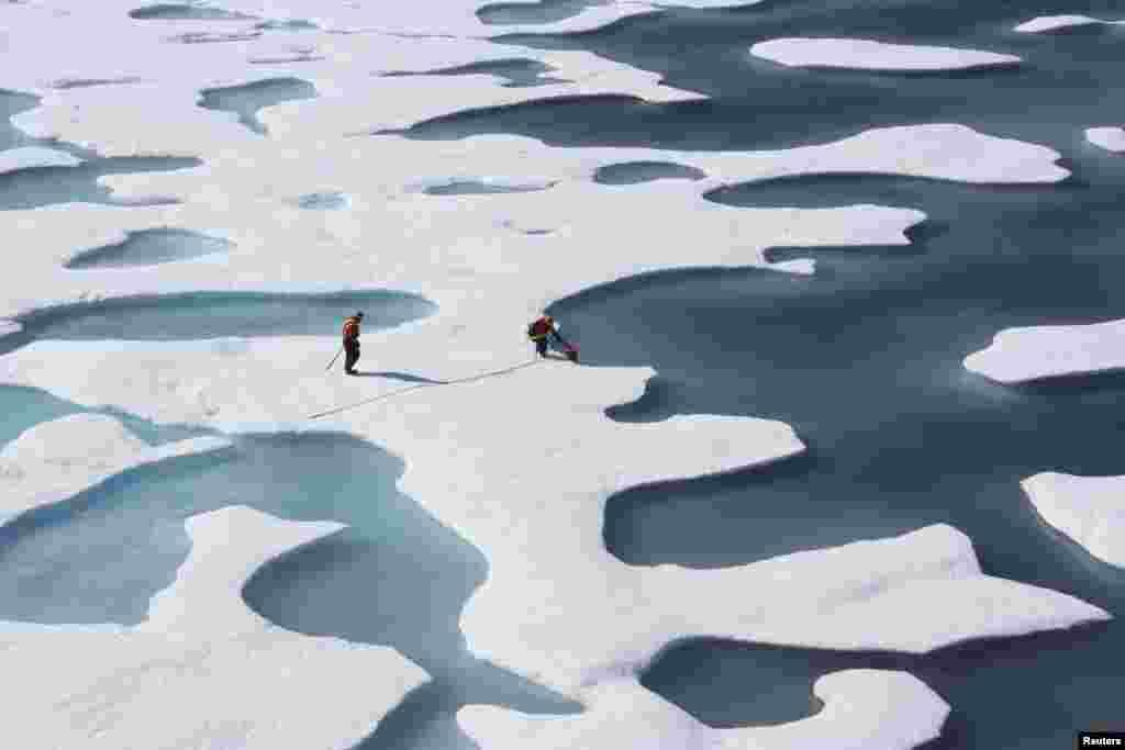 سمندر کاربن ڈائی آکسائیڈ جزب کرنے کا ایک بہت بڑا حصہ ہیں لیکن اس کی وجہ سے سمندر بھی بہت زیادہ تیزابی ہو رہے ہیں۔
