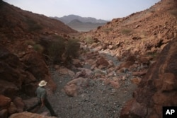 In this March 6, 2017 photo, Peter Kelemen, 61, Oman Drilling Project lead, walks down a valley through a rare exposure of the Earth's mantle, in the al-Hajjar Mountains of Oman.