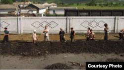 호주 인권단체 '워크프리재단'이 최근 발표한 '2018 세계노예지수' 보고서는 '현대판 노예' 인구 비율이 가장 높은 나라로 북한을 지목했다. 보고서에 실린 북한 노동자들의 사진으로 철로 주변에 떨어진 석탄을 모으고 있다.