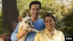 Unos 73 millones de familias estadounidenses tienen una o dos mascotas, los perros y los gatos son los más populares.