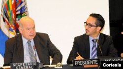 Insulza dijo que la OEA pone a disposición de los estados herramientas para implementar planes de acción nacionales, proyecto al que se acogieron exitosamente 17 países. [Foto: OEA]