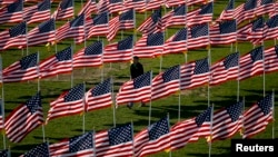 미국 참전군인의 날 일리노이주 국립며지에 성조기들이 꽂혀있다.
