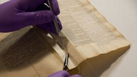 Book expert works to repair and conserve Jefferson's Bible