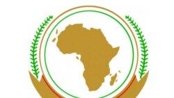 Barrage sur le Nil: l'Afrique du Sud lance une offensive diplomatique