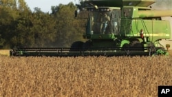 This farmer harvests soybeans using farming equipment in the U.S. state of Illinois. (AP Photo/Seth Perlman)