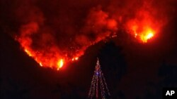 A photo provided by the Santa Barbara County Fire Department, with flames burning behind it, shows a lone Christmas tree standing in the front yard of an evacuated home in Carpinteria, Calif., Dec. 11, 2017.