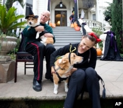 FILE - California Gov. Jerry Brown holds first dog, Sutter, as his wife, Anne Gust Brown holds deputy first dog, Colusa, as they wait for trick-or-treaters outside the Governor's Mansion in Sacramento, Calif., Oct. 31, 2016.