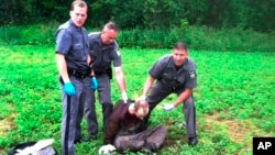 Policajci sa Dejvidom Svetom, koji je upucan u blizini američke granice sa Kanadom, 28. jun 2015.