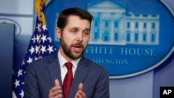 美国国家经济委员会主任布莱恩·迪塞。