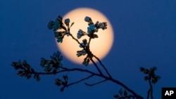 La face de la Lune que l'on voit aujourd'hui est différente de celle qu'elle présentait à la Terre il y a des milliards d'années. (Photo prise à Washington, mardi 22 mars 2016).