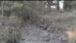 2012-08-07 美國之音視頻新聞: 新西蘭湯加里羅火山發生短暫噴發