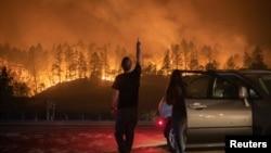 Фото: пожежі в долині Напа в Каліфорнії