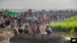 میانمار کی سرحد عبور کر کے بنگلا دیش میں داخل ہونے والا روہنگیا مسلمانوں کا ایک بے یارومددگار قافلہ۔ 17 اکتوبر 2017