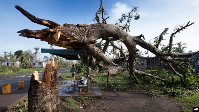 Two boys are seen under a bus shelter that is supporting a fallen tree in the village of Talecake, Fiji, Feb. 24, 2016.