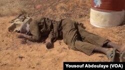 Niger Attack
