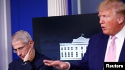 Dr. Anthony Fauci, director of the National Institute of Allergy and Infectious Diseases, listens as President Donald Trump speaks at the daily coronavirus response briefing at the White House in Washington, April 1, 2020.