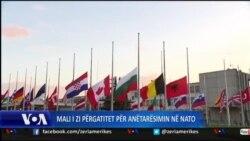 Anëtarësimi i Malit të Zi në NATO
