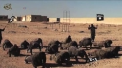 Foreign Fighters May Not Be as Big a Threat as Feared