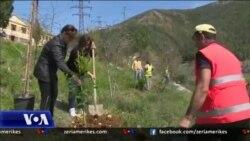 Shqipëri, fushatë për mbrojtjen e pyjeve