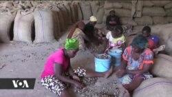 Baadhi ya wakulima wa korosho hawajalipwa mafao yao Tanzania