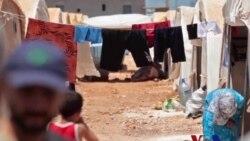 叙反政府武装欢迎更多武器援助 但仍怀疑和平努力