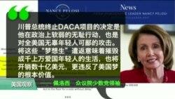 VOA连线: 川普宣布终止DACA,敦促国会采取行动