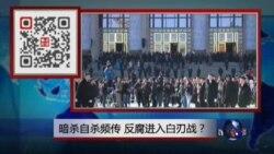 VOA卫视(2015年4月25日 第二小时节目:焦点对话 完整版(重播))