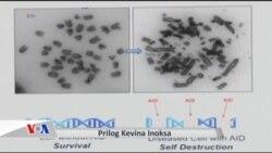 Naučnici otkrili molekul koji izaziva samouništenje ćelija raka